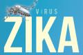 Zika Vírus