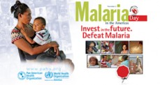 malaria-2015_portal-pesquisa_IN
