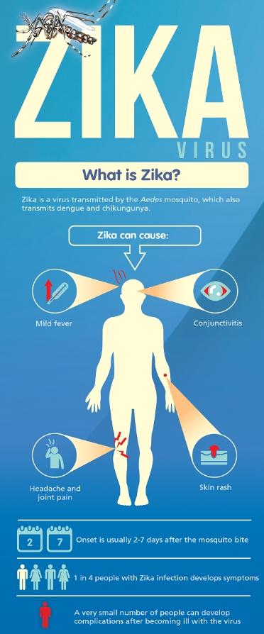 Zika infographic